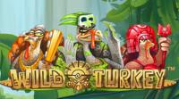 Wild Turkey videoslot